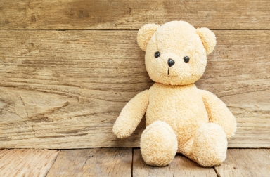 Teddy Bear toy alone on wood background
